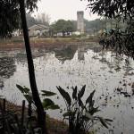 Guanlan-Print-Workshop-14_Lotus-Pond