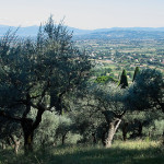 Italy_2008_07_22_Assisi-3