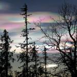 Lapland_5