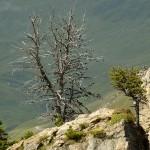 Mayrhofen-15