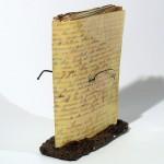 Meno objektas - dailininko knyga. Stephen Copland, Australija