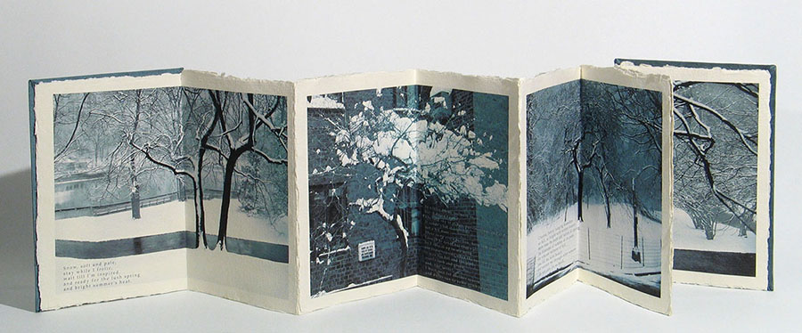 "Photo artist's book of Catherine Kirkpatrick ""The winter site"", 2008. USA"
