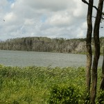 Park of Plaze Lake