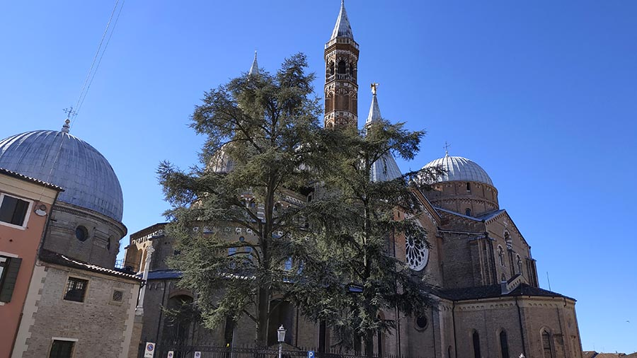 Basilica of Saint Anthony in Padua